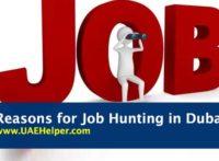 reasons for job hunting in Dubai