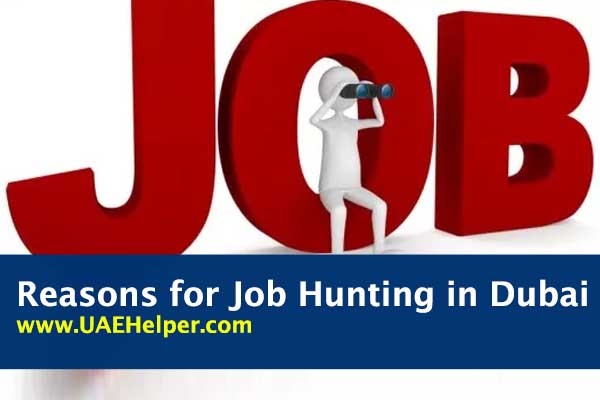 reasons for job hunting in Dubai