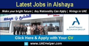 alshaya careers jobs dubai