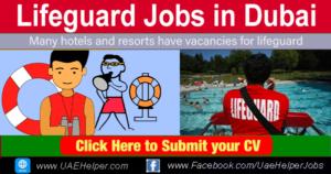 lifeguard jobs in Dubai